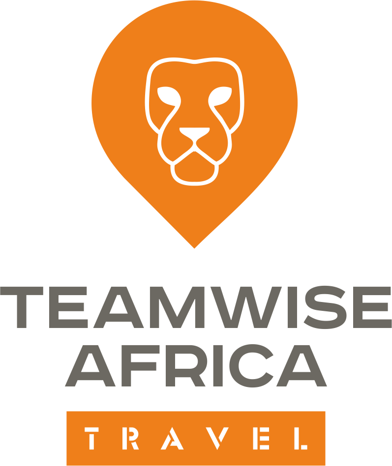 Teamwise Africa